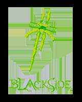 https://lekkerland.es/wp-content/uploads/2018/09/BlackSide_logo.png