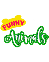 https://lekkerland.es/wp-content/uploads/2018/09/logo-fynny-animals-2.png
