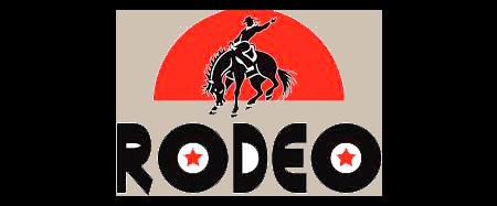 https://lekkerland.es/wp-content/uploads/2018/10/rodeo-logo.png